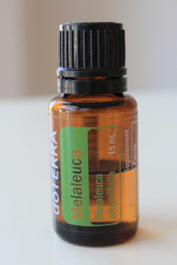doTERRA-Melaleuca-Essential-Oil-15ml